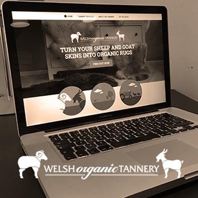 The Welsh Organic Tannery Website design